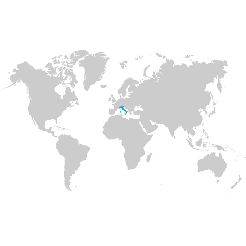 per aziende - internazionale